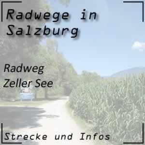 Radweg Zeller See