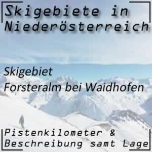 Skigebiet Forsteralm Waidhofen