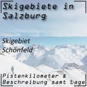 Skigebiet Schönfeld Langlaufen