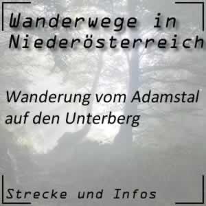 Wanderung vom Adamstal auf den Unterberg