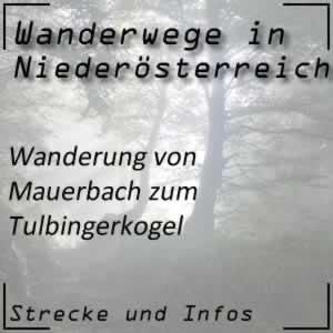 Wanderung von Mauerbach zum Tulbingerkogel