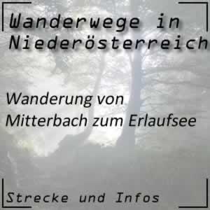 Mitterbach -> Erlaufsee Wanderung