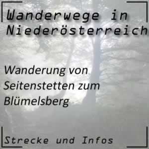 Wanderung von Seitenstetten zum Blümelsberg