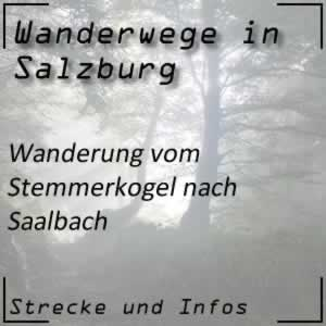 Wanderung vom Stemmerkogel hinab nach Saalbach