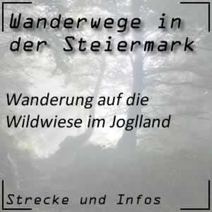 Wildwiesenwarte Wanderung