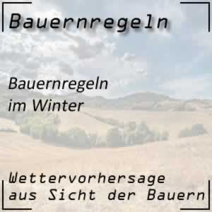 Bauernregeln über den Winter
