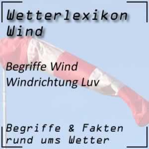 Luv beim Wind