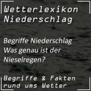 Wetterlexikon Nieselregen