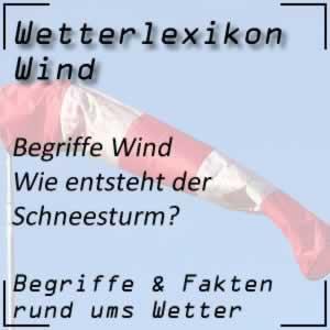 Wetterlexikon Schneesturm