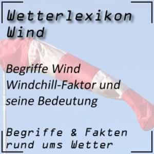 Windchill-Faktor