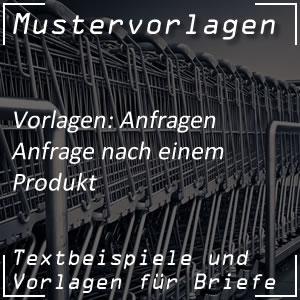 Mustervorlage Anfrage nach Produkt